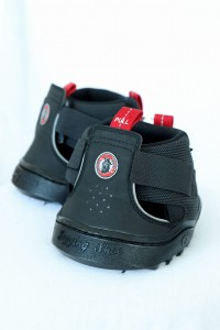 Trekking Jogging Shoe